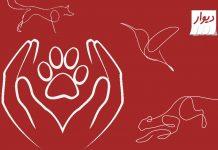 گزارش حیوانات ممنوعه دیوار